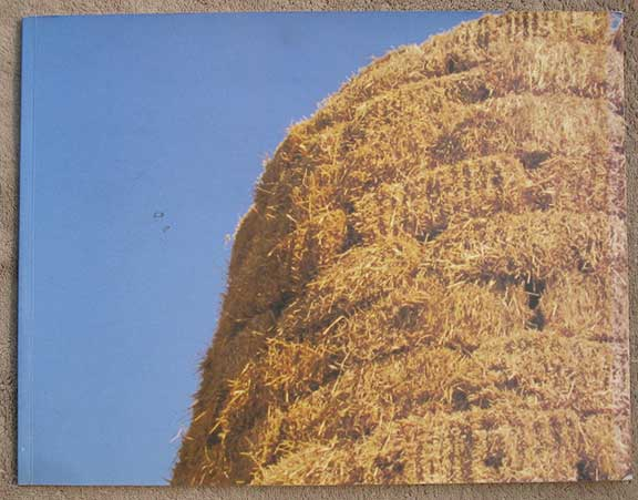 Image for Jerry Pethick: Straw Tower. May 5 - July 31, 1998.