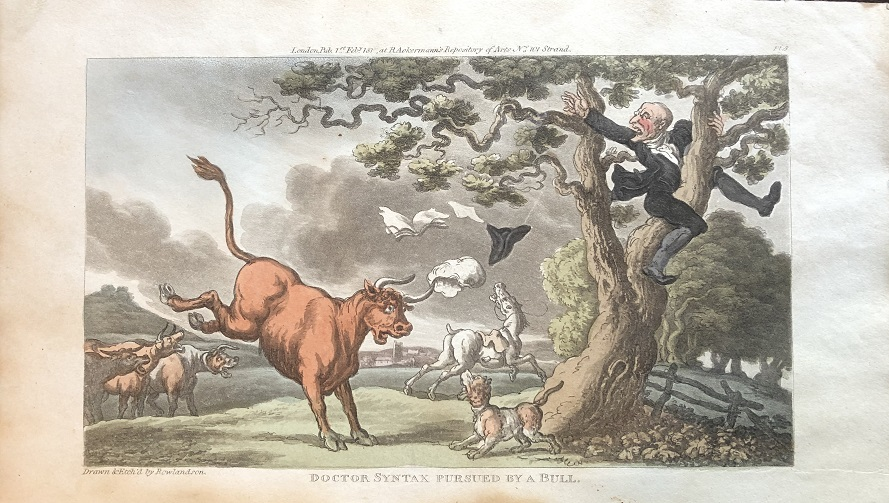 Image for Doctor Syntax Pursued by A Bull. [From: The Tour of Doctor Syntax In Search of the Picturesque. A Poem. 7th Edition with new Plates].